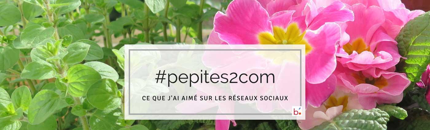 Les entreprises communiquent sur les réseaux sociaux : mes #pepites2com