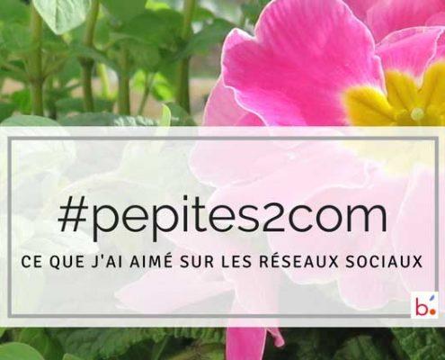 Les entreprises communiquent sur les réseaux sociaux : des #pepites2com