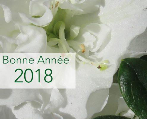 Bonne année 2018 à vous !