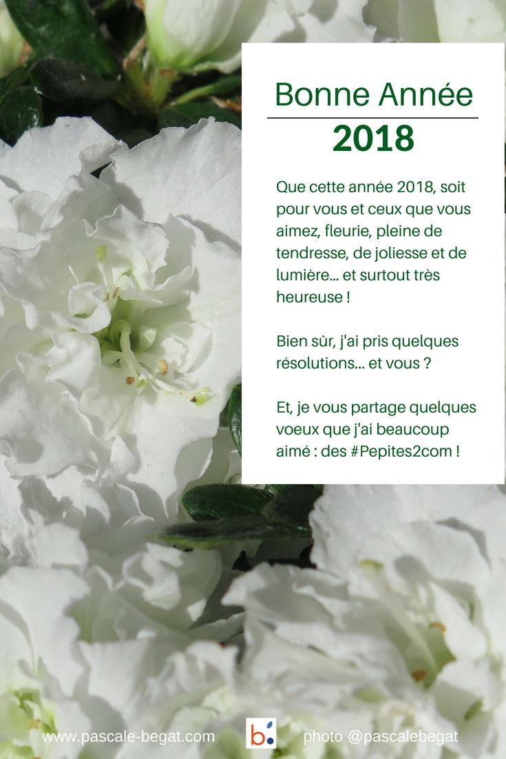 Je vous souhaite une merveilleuse année 2018 !
