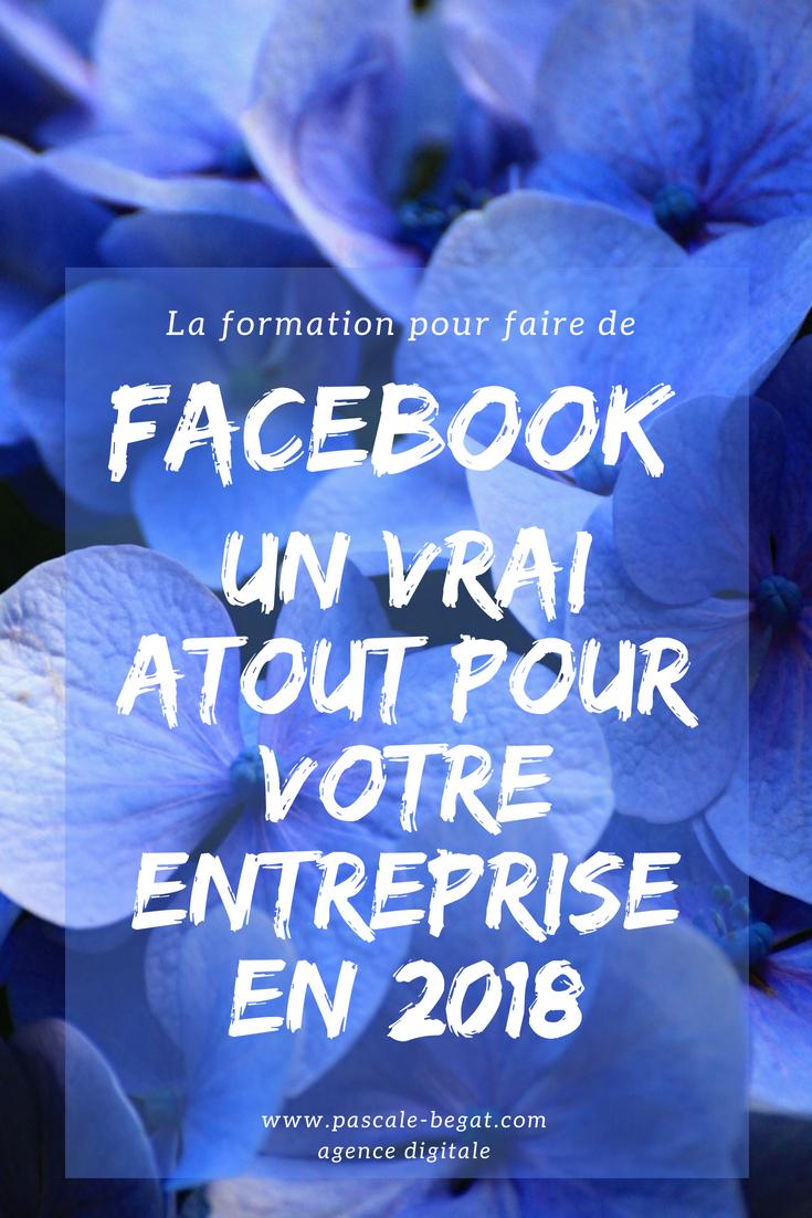 Formation Facebook pour les entreprises, les PME et les entrepreneurs