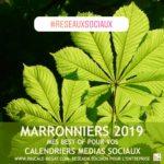 Marroniers 2019 : les meilleurs calendriers pour 2019 pour plus d'inspiration pour votre blog, votre marketing et vos réseaux sociaux !