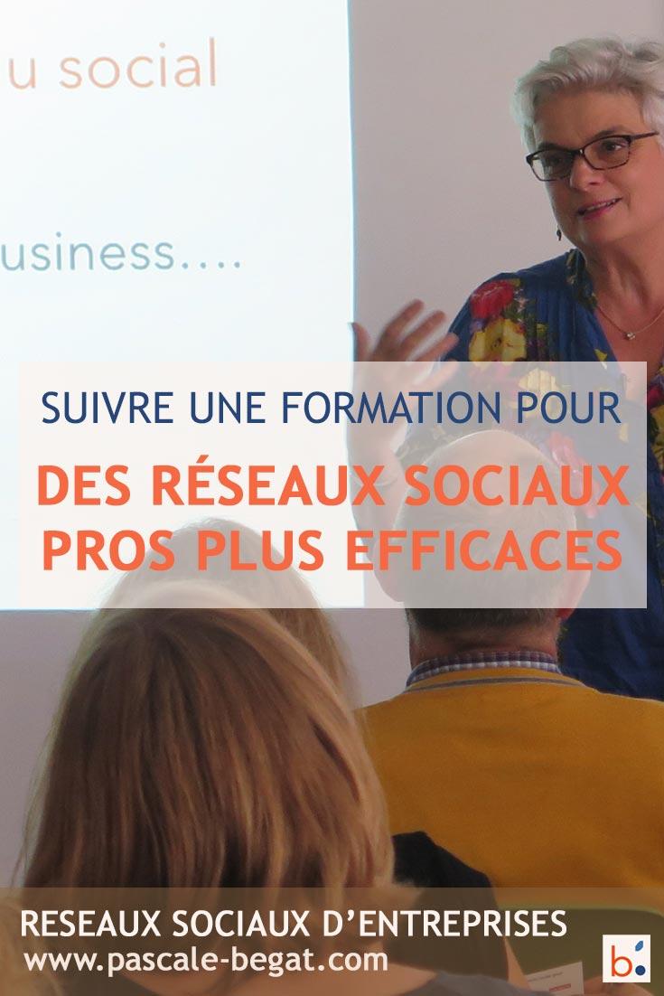 Formations reseaux sociaux pour les entreprises par Pascale Bégat Community manager freelance