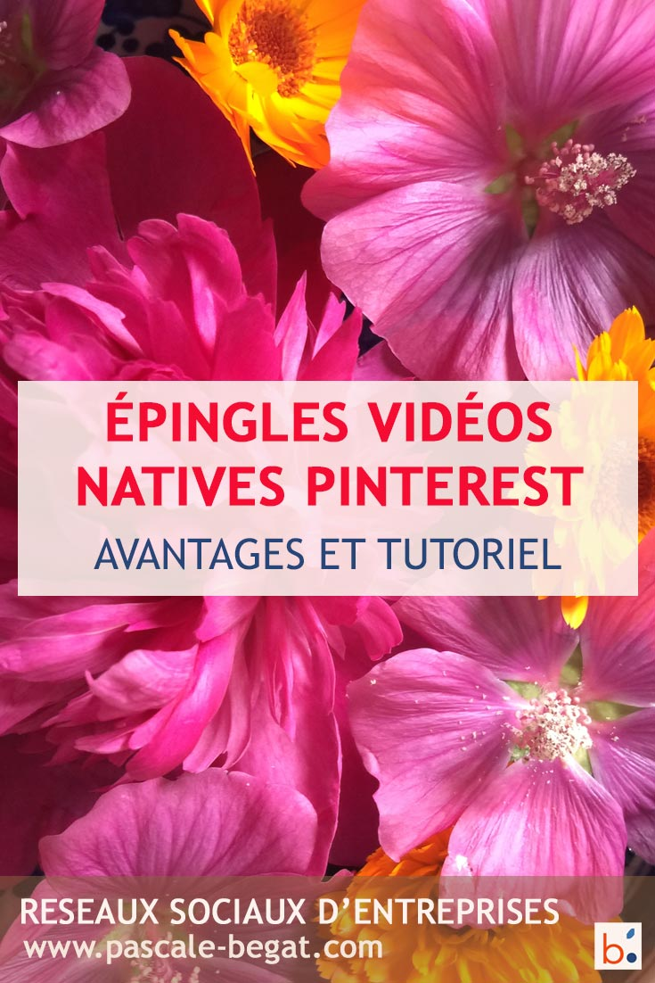 creer epingle video Pinterest